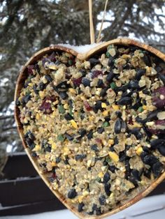 Want to attract your feathered friends? Want something cheaper and better than the suet blocks found in big block stores?  The birds go crazy for this!  We get several species of woodpecker, bluejays, chickadees, nuthatches, blackbirds, snowbirds and others coming to taste our wares!