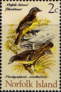 Norfolk Island 1970 Birds Mint SG 104 Scott 127 Other Norfolk Island Stamps HERE