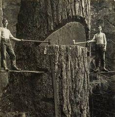 Conquer anything. #vinatge #lumberjack #adventure #explore #hardwork by churchkey