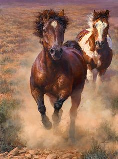 Into the Great Wide Open by Bonnie Marris LIMITED EDITION CANVAS