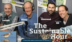 Today, we take a step outside to the wetlands, and to the ocean, to the birds and the sea life. In The Sustainable Hour on 17 February 2016, we meet four inspiring environmentalists: Rod Lowther and Craig Morley from Geelong Field Naturalists Club, who are working to save the Moolap Wetlands, Anthony Hill from Plastic Pollution Solutions, and Tim Silverwood from Take 3 for the Sea.   The Sustainable Hour no. 109 on 17 February 2016
