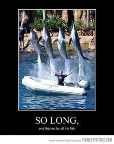 So long and thanks for all the fish! #HitchhikersGuide