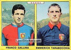 FRANCO GALLINA - EMMERICH TARABOCCHIA 1966-67 GENOA Panini Calciatori 1966-1967 - Collection preview - laststicker.com
