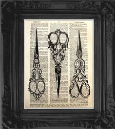 Vintage scissors illustration