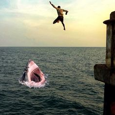 My number 1 fear when jumping off something off something into the water