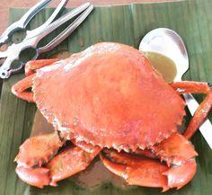 Sweet Crabs! Yummy creamy coconut cream. #learnwdmom