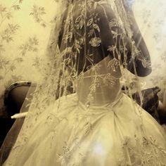 Veil  details embroider  Selma karoui