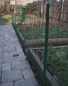 Fence to keep dogs out Gardening Pinterest Gardens Dogs and