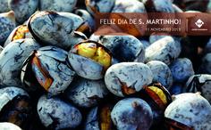 DIA DE S. MARTINHO - 2013