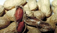 How creating a tolerance can help save the lives of people with peanut allergies.