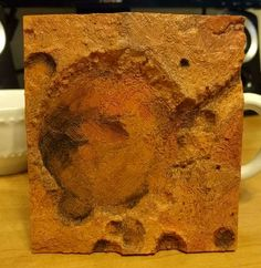My brother 3d printed and painted the Gusev crater (mars).