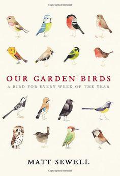 Wee Birdy - Matt Sewell book cover