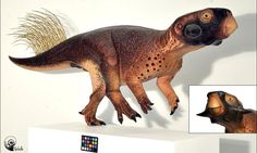 Scientists reveal most accurate depiction of a dinosaur ever created | Elsa Panciroli | Science | The Guardian