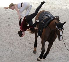 8/19/2012  The British equestrian vaulting team, on their horse Go for Gold, fall as they compete in the Squad's event of the FEI World Vaulting Championship at the European Horse Pole in Yvre-LaEveque, France. The Swiss team finished first.
