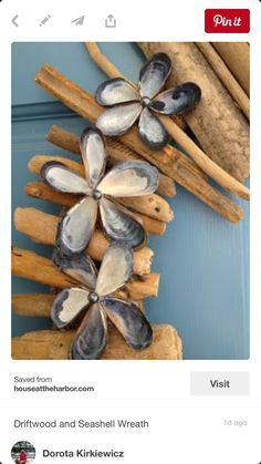 Shells and driftwood door wreath.