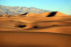 Stovepipe Wells Dunes   Flickr - Photo Sharing!