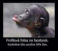 Profilová fotka na facebook. Konkrétne túto používa 50% žien :)))