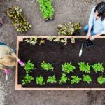 Step-by-Step: Build the Ultimate Raised Bed | Sunset Magazine