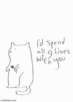 Id spend all 9 lives with you love love quotes quotes quote cat crush kitty quotes and sayings image quotes picture quotes 9 lives