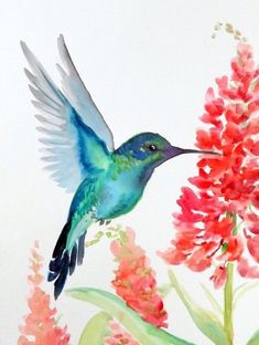 Toti Guerra - Toti Guerra You are in the right place about Toti Guerra Tattoo Design And Style Galleries On The N - Hummingbird Drawing, Watercolor Hummingbird, Watercolor Animals, Watercolor And Ink, Watercolour Painting, Painting & Drawing, Humming Bird Watercolor, Hummingbird Tattoo, Watercolors