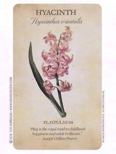 Botanical Flowers, Botanical Illustration, Botanical Prints, Types Of Flowers, Love Flowers, Beautiful Flowers, Impressions Botaniques, Flower Meanings, Language Of Flowers