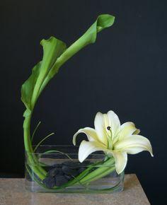 Risultati immagini per ikebana arte floral japones Contemporary Flower Arrangements, White Flower Arrangements, Ikebana Flower Arrangement, Floral Centerpieces, Arte Floral, Deco Floral, Unusual Flowers, Types Of Flowers, Beautiful Flowers