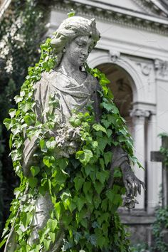 Buy Statue covered with ivy by KYNASTUDIO on PhotoDune. A praying statue woman covered with creeping ivy in an old cemetery. Studio Ghibli, Greek Statues, Angel Statues, Greek Mythology Art, Temple Ruins, Lawn And Landscape, Garden Angels, Old Cemeteries, Pose Reference Photo