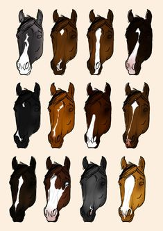 DeviantArt: More Collections Like Chestnut Color Genetics Chart by MagicWindsStables Horse Color Chart, Horse Coat Colors, Horse Markings, Horse Facts, Horse Artwork, Most Beautiful Horses, Hobby Horse, Cute Horses, Cute Little Animals