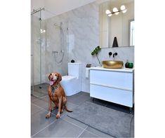 Rokfort Home (@rokforthome) • Instagram-fényképek és -videók Interior Design, Instagram, Home, Nest Design, Home Interior Design, Interior Designing, Ad Home, Home Decor, Homes