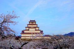 鶴ケ城.桜の名所.