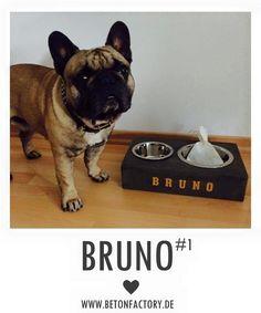 Betonnapf  #BTNDOG Bruno mit seinem neuen Beton-Fressnapf :)