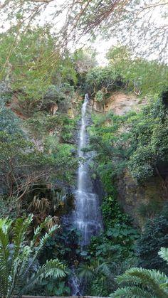 Beautiful waterfall at the Ungeni Bird Park in Durban North Coast, Beautiful Waterfalls, Bird, Outdoor, Outdoors, Birds, Outdoor Living, Garden