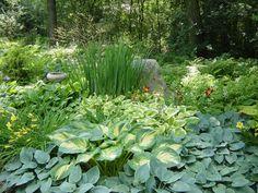 hosta, siberian lilies, day lilies, & ferns