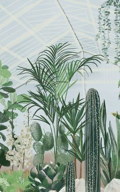 Hand-painted in a detailed watercolour style, our Palm House wallpaper mural brings an abundant botanical greenhouse into your home. This breathtaking mural will turn your chosen room into an environment that feels more expansive thanks to the lofty 3D greenhouse design. And the huge variety of leafy green plants and succulents will give a fresh, nature-filled feeling to your living room, dining space, home office, or bathroom. Paradise Wallpaper, World Map Wallpaper, Plant Wallpaper, Tropical Wallpaper, Forest Wallpaper, Botanical Wallpaper, Beach Wallpaper, Kids Wallpaper, Flower Wallpaper