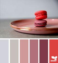 Color Serve via @designseeds #seedscolor #color #colorpalette #color #palette #pallet #colour #colourpalette #design #seeds #designseeds