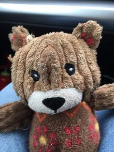 Found on 01 Apr. 2016 @ Newton by the Sea, Northumberland. Teddy bear found in a car park by Newton by the Sea, it looks very loved! Visit: https://whiteboomerang.com/lostteddy/msg/d3j2sz (Posted by Iona on 03 Apr. 2016)