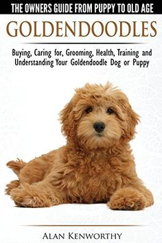 Goldendoodles - The Owners Guide from Puppy to Old Age - Choosing, Caring for, Grooming, Health, Training and Understanding Your Goldendoodle Dog - http://weloveourpugs.net/?product=goldendoodles-the-owners-guide-from-puppy-to-old-age-choosing-caring-for-grooming-health-training-and-understanding-your-goldendoodle-dog