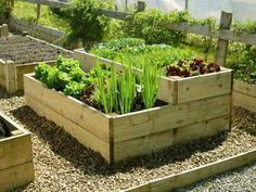Raised Vegetable beds are simple to make and easy to maintain; use this method a… Raised Vegetable beds are simple to make and easy to maintain; use this method a…,Garten Raised Vegetable beds. Vegetable Garden Planning, Backyard Vegetable Gardens, Container Gardening Vegetables, Veg Garden, Vegetable Garden Design, Garden Types, Small Garden Design, Vegetable Ideas, Vegetables Garden