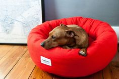 NEW! For modern dogs that love to curl up in style - the new designer Cotton Donut Dog Bed from London brand Vackertass.