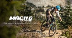 Pivot Cycles | Performance Redefined