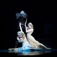 Pittsburgh Ballet Theatre: DRACULA