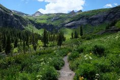 Located near Silverton in the San Juan National Forest, the Ice Lakes Trail features jaw-dropping views of lush meadows, colorful peaks, and the pristine waters of the Island, Clear, Fuller, and Ice Lakes.
