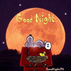 Good Night...I love Woodstock!! Haha!!