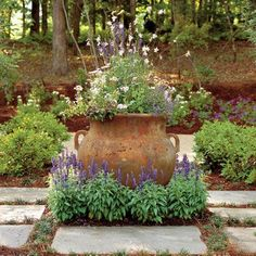 gorgeous planter surrounded by salvia