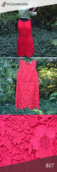 9170cf15894 Kensie XL Red Lace Sleeveless Dress with Gold Zip What s not to love about  this flirty