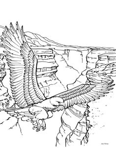 3D Coloring Pages For Adults of an eagle resting online