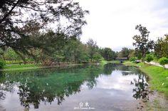 台東森林公園池畔/作者:titimonday