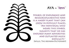 The aya is a very strong tree, it represents strenght and grow in adversity. I want an aya because I have been through a lot of troubles in my life.