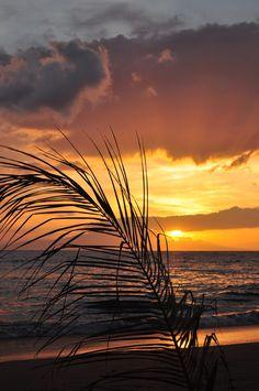 """Maui Sunset"" by Beautiful Sunset, Beautiful Beaches, Landscape Photography, Nature Photography, Skier, Aloha Hawaii, Good Night Moon, I Love The Beach, Amazing Nature"