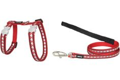 RED DINGO FULLY ADJUSTABLE DOG PUPPY COLLAR /& LEAD PINK STRIPE
